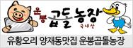 지리산토종흑돼지, 유황오리전문점 양재동맛집 운봉곱돌농장