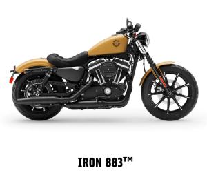 Iron 883™