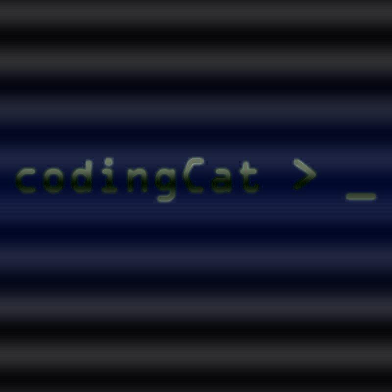 codingcat.kr