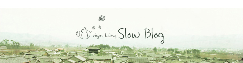SlowBlog