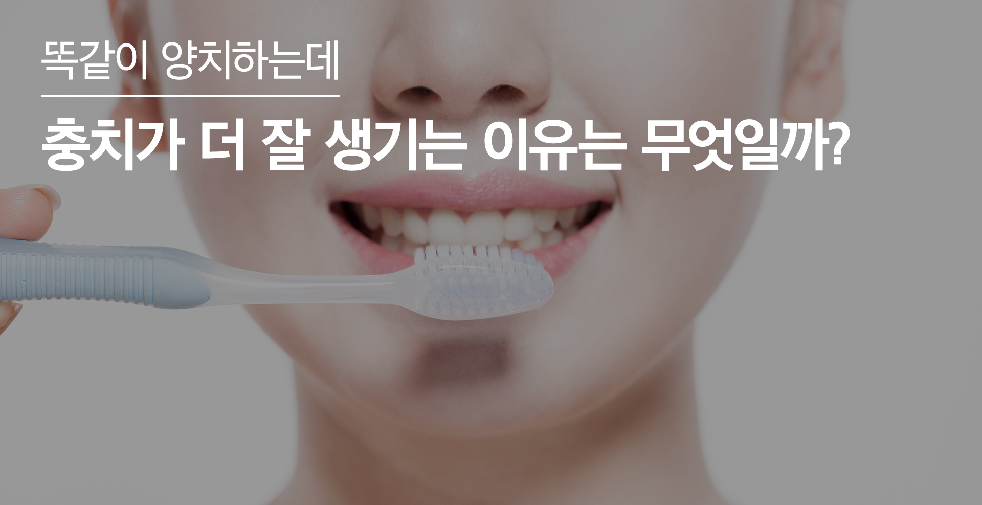 올바른 치아 관리
