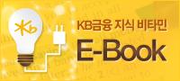 하반기 2013 KB 금융 지식 비타민